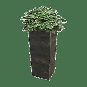 Cedar Wood Planter